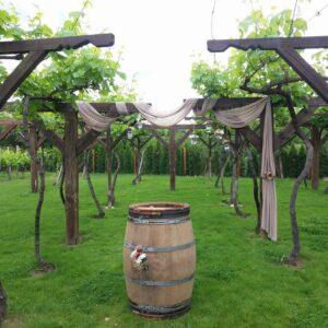 Wine and Spa Complex Starosel